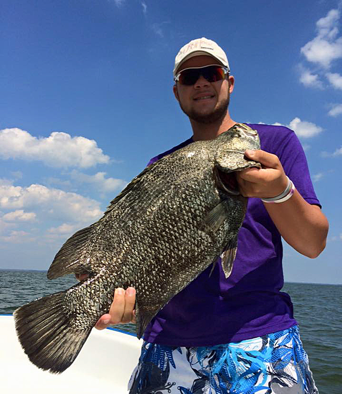 Tripletail fish Gulf Shores Orange Beach
