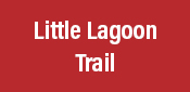 Little Lagoon Trail