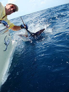 Man caught sailfish