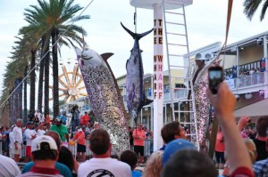 A weigh in from the 2013 Blue Marlin Grand Championship of the Gulf.