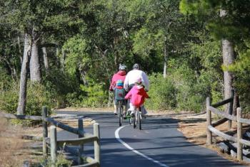 Family Rides bikes on Backcountry Trail