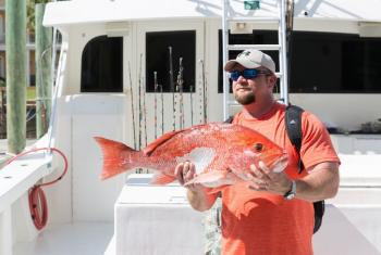 Red Snapper Gulf Shores