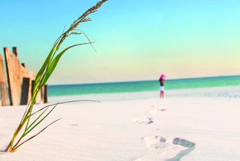 Beaches, Gulf Shores and Orange Beach AL