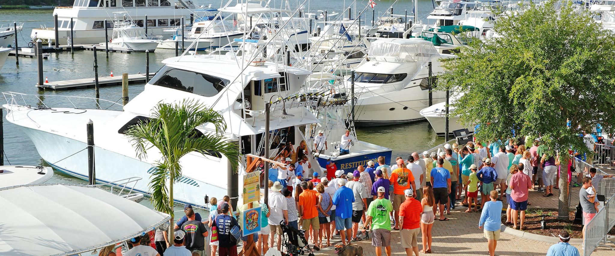 Blue Marlin Grand Championship at The Wharf Orange Beach