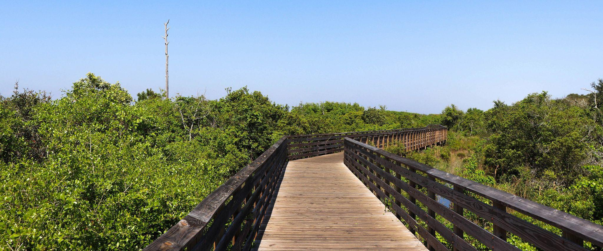 Wheelchair accessible trails found in Gulf State Park