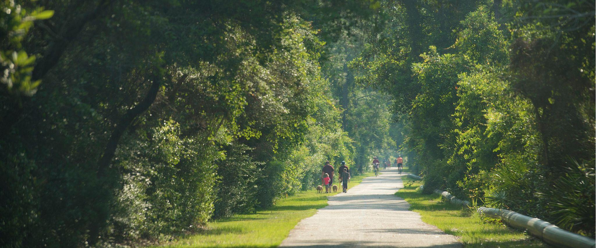 Explore nature at Gulf State Park