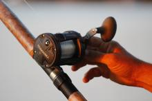 Gulf Shores Fishing rod